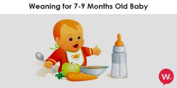 Baby Milestones 8 Months
